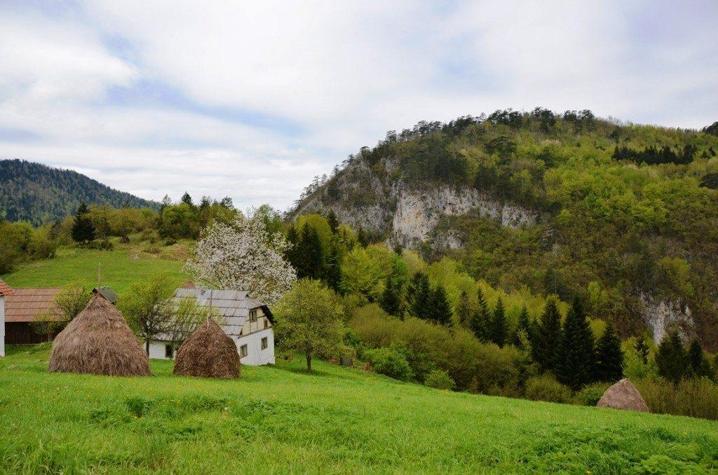 Wandelen in Nationaal Park Tara in Servie
